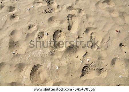 Texture of sand beach with foot prints