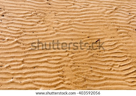 Texture of sandy beach at low tide - stock photo