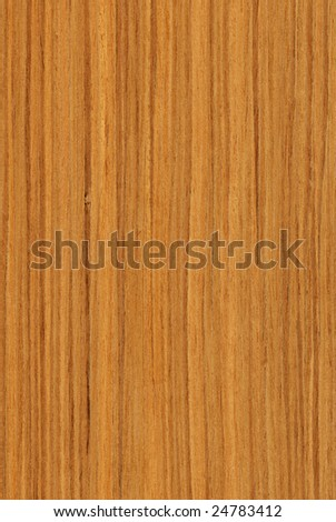 Texture of teak (high-detailed wood texture series) - stock photo