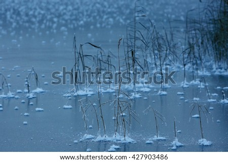 texture of the frozen lake, the ice - stock photo