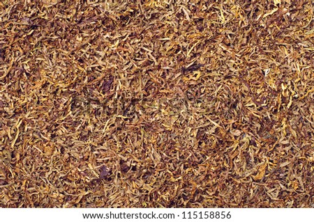 Texture of tobacco for cigarettes - stock photo