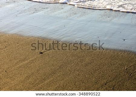 Texture Sand Dune Desert in Gran Canaria Island Spain - stock photo