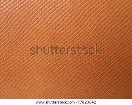Texture skin - stock photo