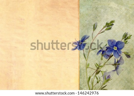 Textured floral background image and design element
