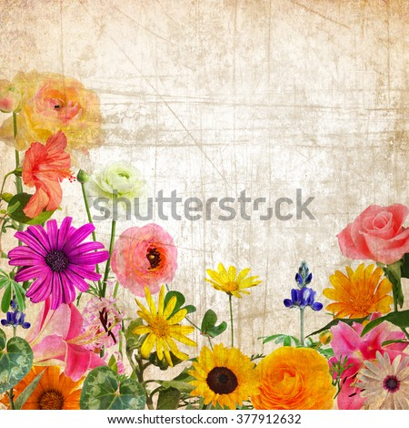 Textured old paper background with beautiful flowers. Nature abstract background - stock photo