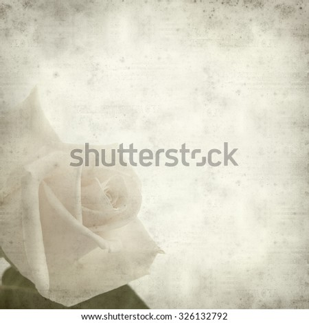 textured old paper background with gentle pink and yellow rose