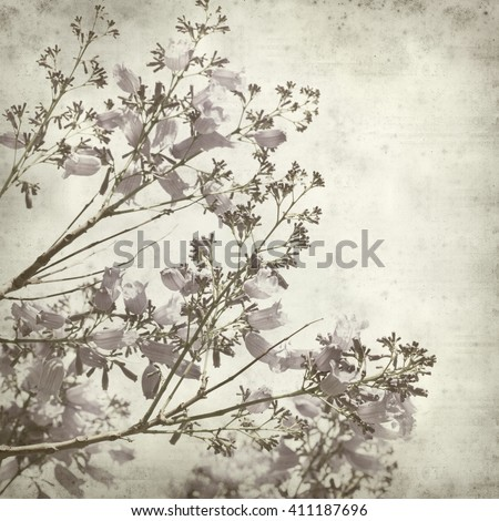textured old paper background with lilac jacaranda flowers - stock photo
