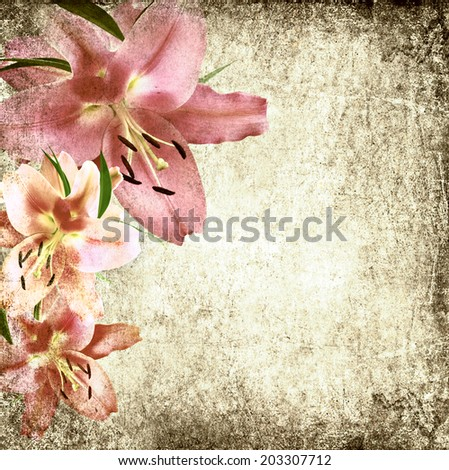 Textured old paper background with lily flowers. Copy space is available  - stock photo