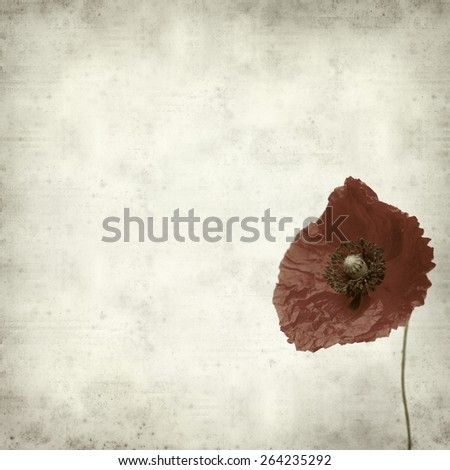 textured old paper background with red poppy flower - stock photo