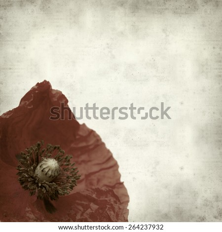 textured old paper background with red poppy flower