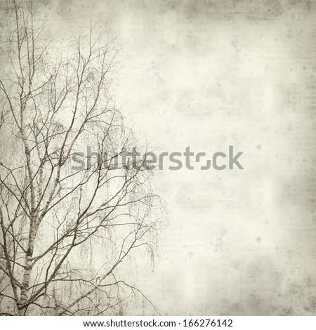 textured old paper background with winter trees - stock photo
