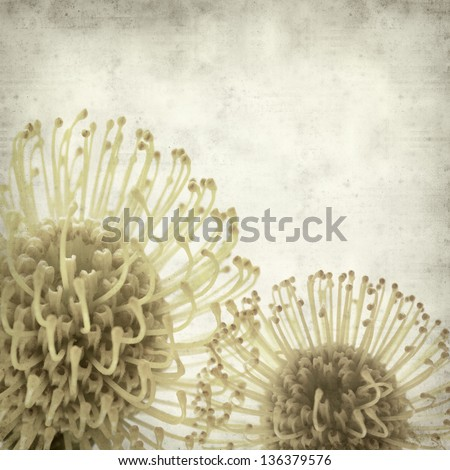 textured old paper background with yellow protea - stock photo