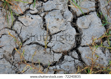Textures and patterns of a cracked dry soil with dried grass