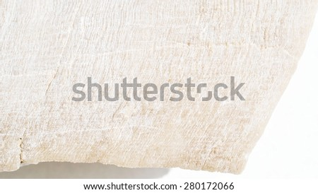 Textures fossil remains - stock photo