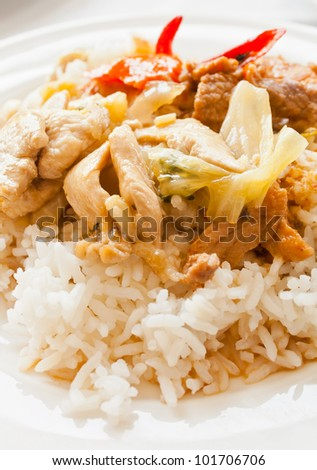Thai curry with rice on a white dish - stock photo