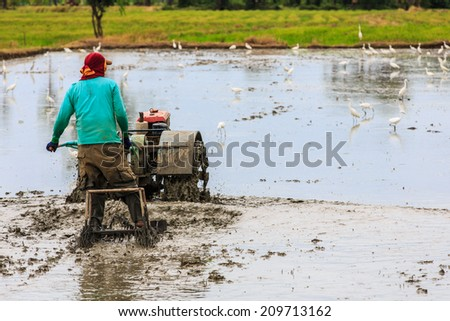 Thai farmer using walking tractors for cultivated soil for rice plantation in Thailand. - stock photo