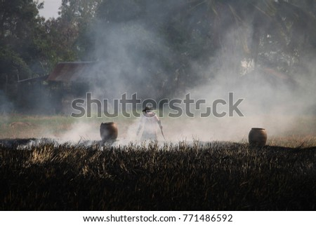 Thai farmers are burning straw stubble when the harvest is complete