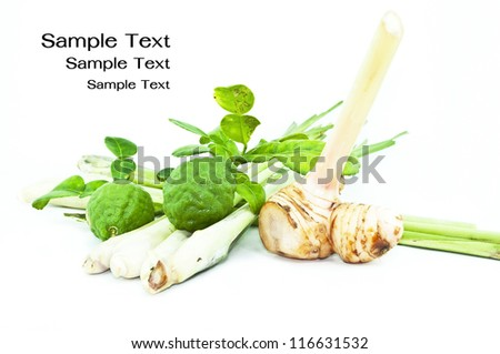 Thai food ingredient for Tom yum kung isolated in white backgroud ,galangal,  lemongrass,bergamot - stock photo