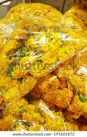thai yellow flower in plastic bag - stock photo