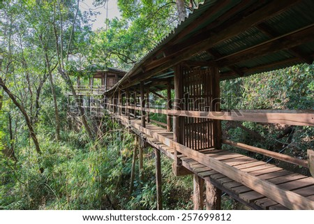 Thailand,Apartments,wood bridge