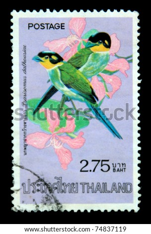 "THAILAND -CIRCA APRIL 1975: A postage stamp printed in Thailand shows image of Thai bird with the inscription ""Psarisomus Dalhousiae"", from the series ""Thai birds, 2nd Series"", circa April 2, 1975"
