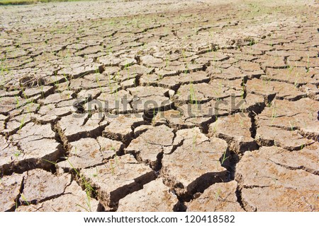 Thailand cracked soil during drought. - stock photo