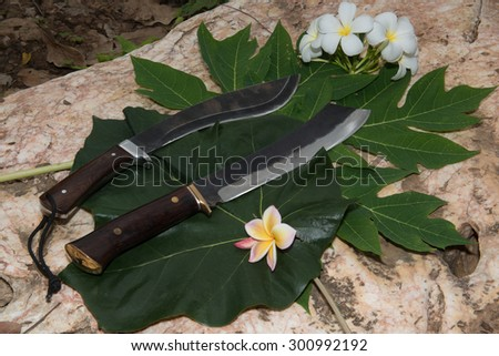 Thailand hunting knife on a stone.