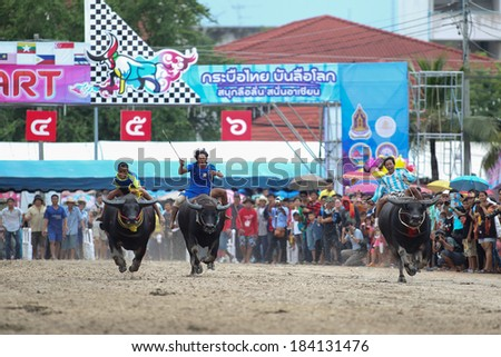 THAILAND - OCTOBER 18, 2013 : unidentified participants in 142th buffalo racing festival at chonburi buffalo stadium on october 18, 2013 in Thailand.