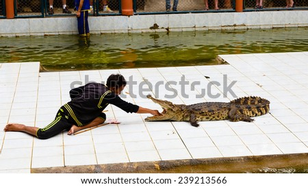 Thailand, Samui -  December 14, 2014: excursion to a farm of crocodiles, show with crocodiles