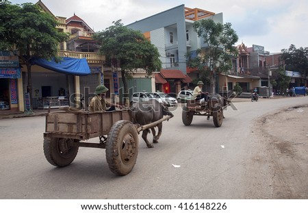 THANH HOA, Vietnam, March 8, 2016 group of men, drivers of buffalo on the road, Thanh Hoa Province, Vietnam