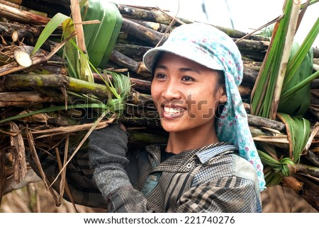 THANH HOA, Vietnam, March 16, 2014 portrait woman (name unknown) smiling during sugarcane harvest - stock photo