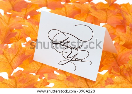 Thank you card on a bright autumn background of leaves - stock photo