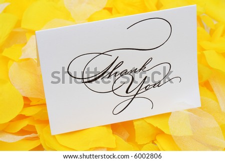 Thank you card on yellow flower petals - stock photo