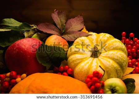 Thanksgiving day autumnal still life - stock photo