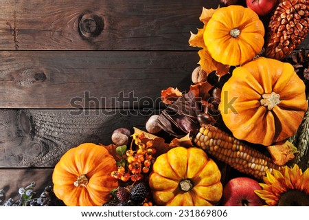 Thanksgiving - different pumpkins with nuts, berries, maize-cob and grain on wooden floor with copyspace - stock photo