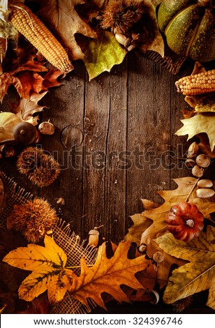 Thanksgiving dinner. Autumn fruit on wood with copyspace. Thanksgiving autumn background