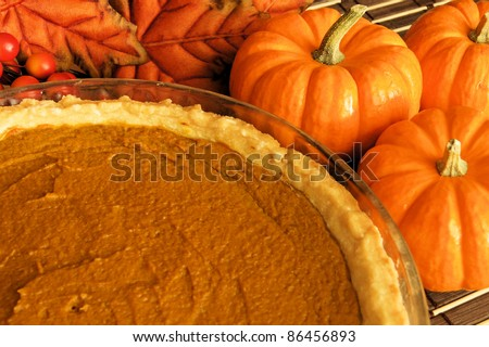 Thanksgiving pumpkin pie in a pie plate with autumn leaves and pumpkins behind - stock photo