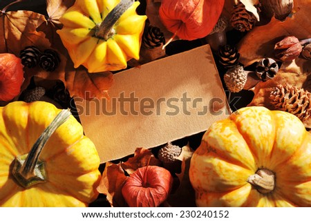 Thanksgiving - pumpkins, Physalis and greeting card on wooden board with copyspace - stock photo