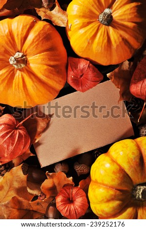 Thanksgiving - pumpkins, Physalis and greeting card on wooden board with copyspace
