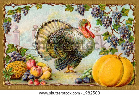 Thanksgiving turkey, bountiful harvest, surrounded by grapes & gilded gold frame - an ornate vintage illustration - circa 1910