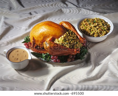 Thanksgiving Turkey with Dressing and Gravy Boat - stock photo