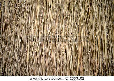 thatch roof background - stock photo