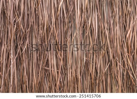 Thatch roof background, hay or dry grass background. - stock photo