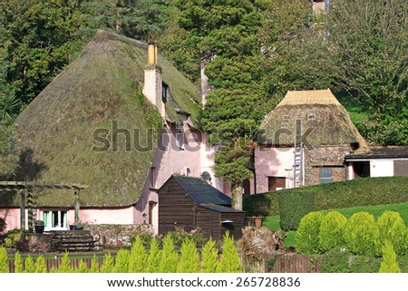 Thatched houses, Cockington - stock photo