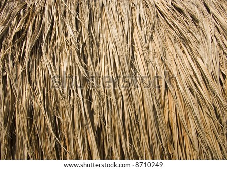 Thatched palm leaf roof - stock photo