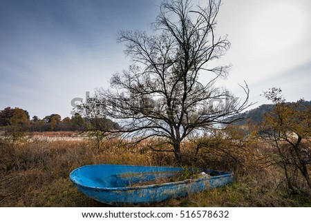 The abandoned boat in front of the tree.
