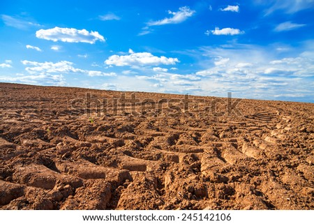 The agricultural arable land field in the spring for crops