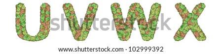 The alphabet leaf on white background U V W X - stock photo