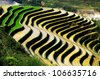 the amazing landscape of Sapa, due to the rice cultivation in Vietnam - stock photo