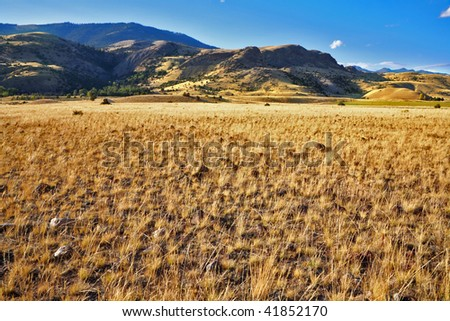 The American prairie in clear autumn day - stock photo